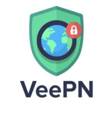 veepn logo